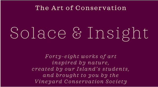 Solace & Insight - Works of Art Inspired by Nature